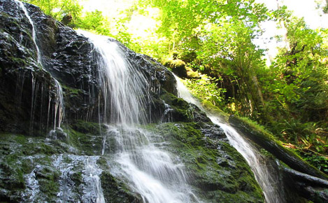 A waterfall in Moran State Park on Orcas Island